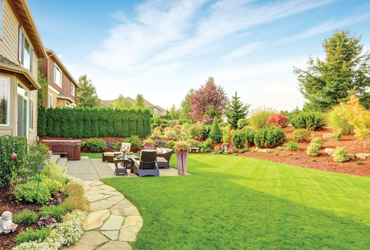 - 20% off Any Landscape Service