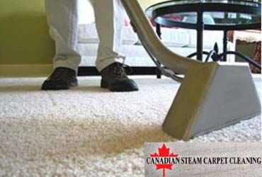 - $5 Off Any Carpet Cleaning