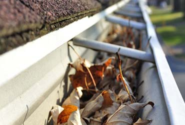 - Gutter Cleaning $125
