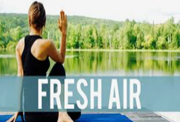 "- ""Free Fresh Air Follow-up"
