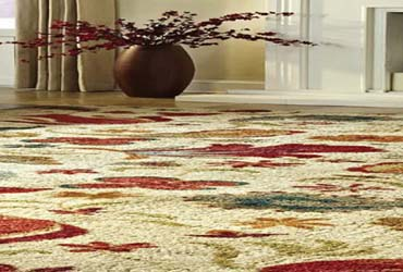 - 25% Off Area Rug Cleaning