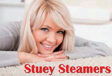 - Steam Clean Any 3 Rooms For $79