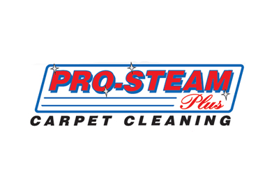 Pro Steam Plus Carpet